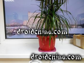 jiayu g5 camera sample photo 3