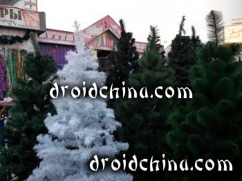 jiayu g5 camera sample photo 2