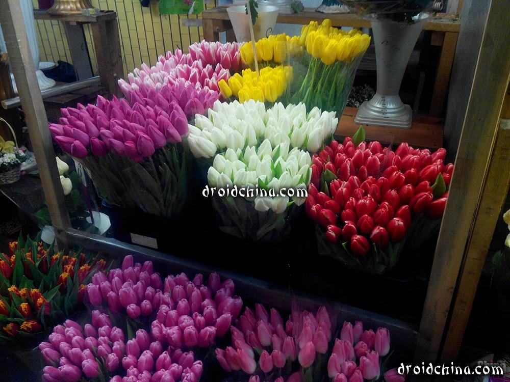 flowers via globus